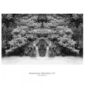 Sundance-abstract-1