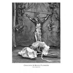 Crucifix-flowers