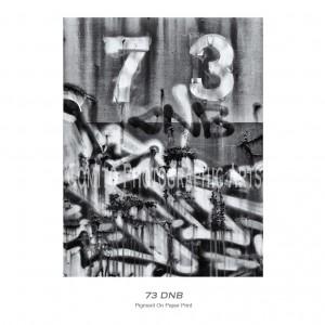 73-DNB