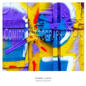 Camel-Lock1