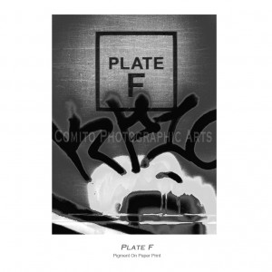 Plate-F