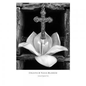 Crucifix & Yucca